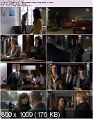 Prawo Agaty (2012) [S01E11] PL.HDTV.XviD-TRRip