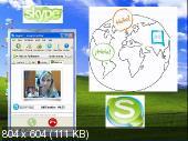 Полный видео курс по программе Skype (2012/swf)