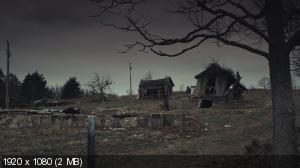 Зимняя кость / Winter's Bone (2010) BluRay + BD Remux + BDRip 1080p / 720p + HDRip 1400/700 Mb