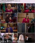 The Big Bang Theory [S05E24] HDTV.XviD-AFG