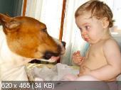 http://i38.fastpic.ru/thumb/2012/0515/f4/68907b8b4e1516922bc832df062115f4.jpeg