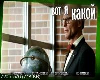 Вот я какой / That's What I Am (2011) DVD9 + DVD5