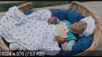 Шалун / Little Man (2006) DVD5